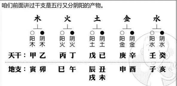 15命理调整应以什么为中心,如何正确运用补泄化  第1张